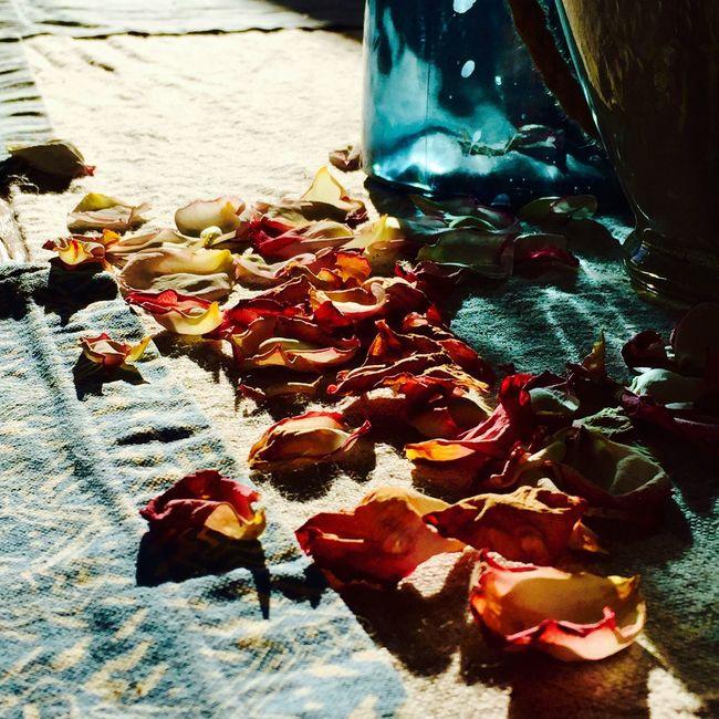 Pedaling for petals