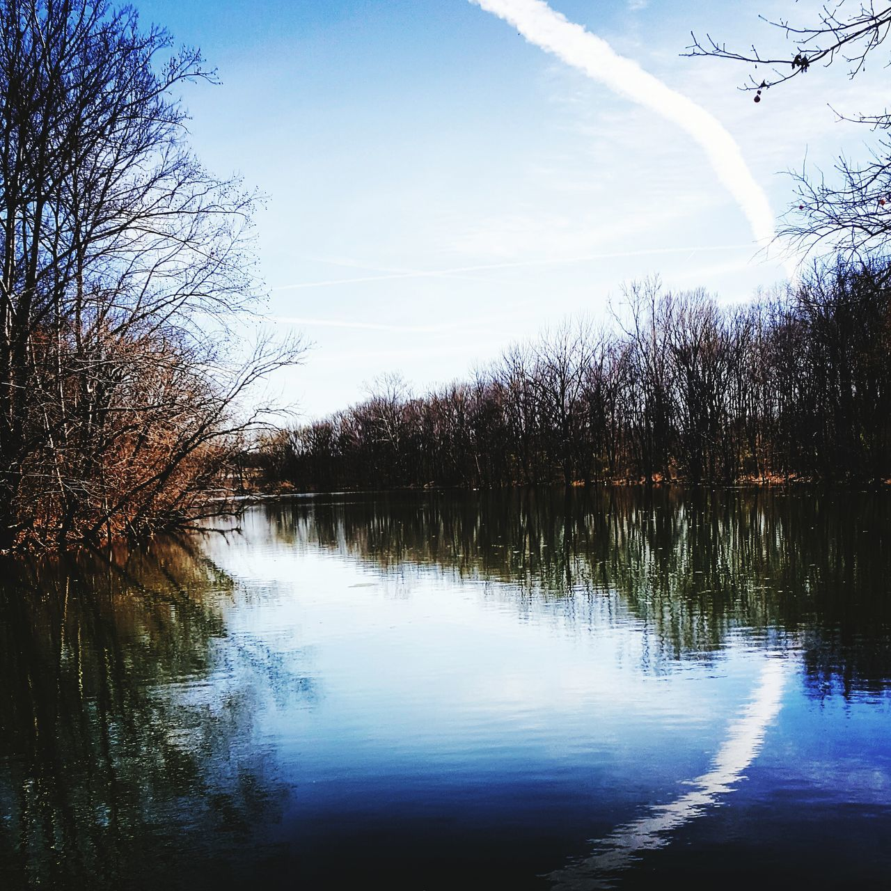 reflection, tree, water, lake, tranquil scene, beauty in nature, nature, tranquility, scenics, no people, sky, outdoors, day, bare tree