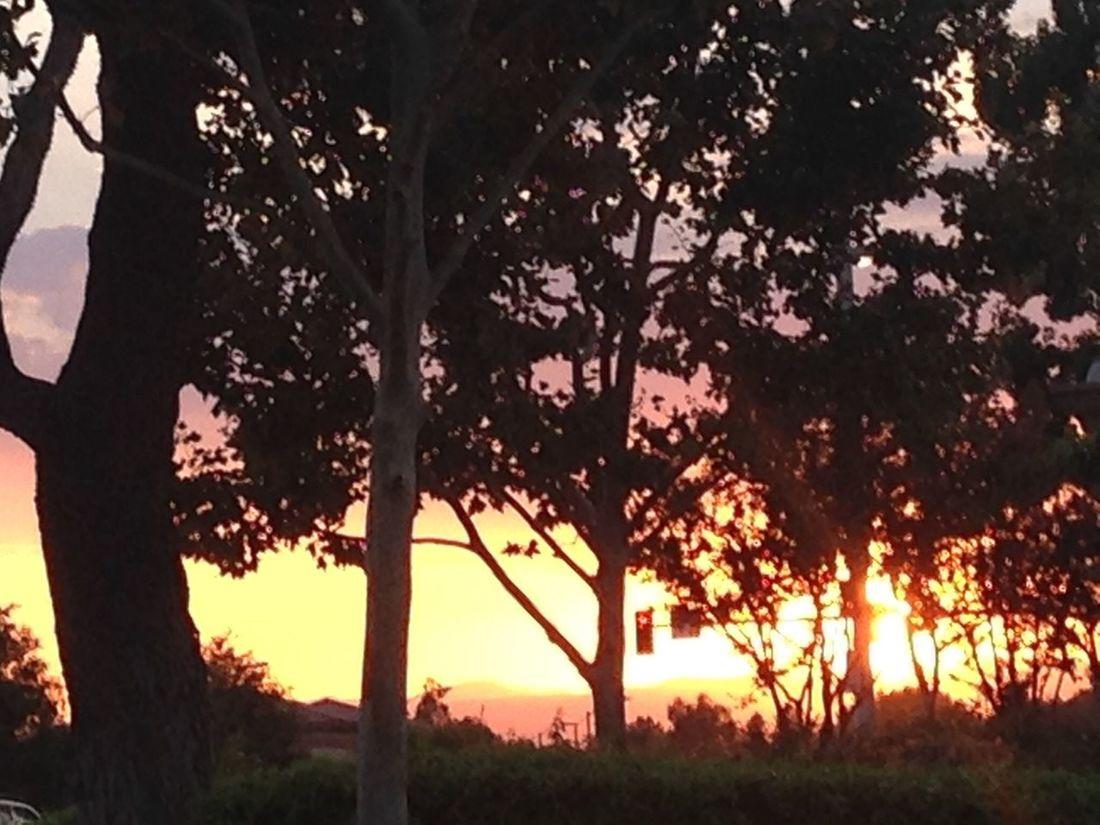 California Sunset California Summer Painted Skies Sunset
