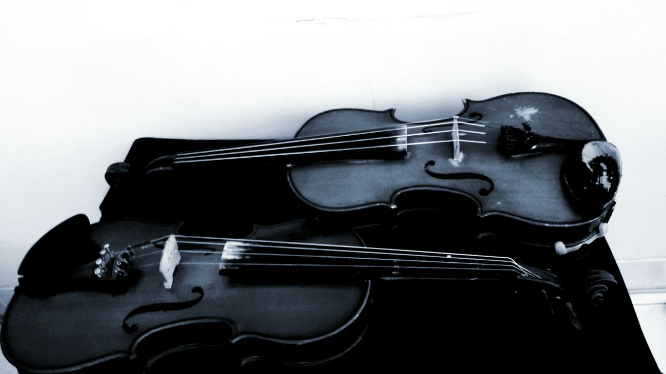 Violin Violinist Viola Music Black & White Violon