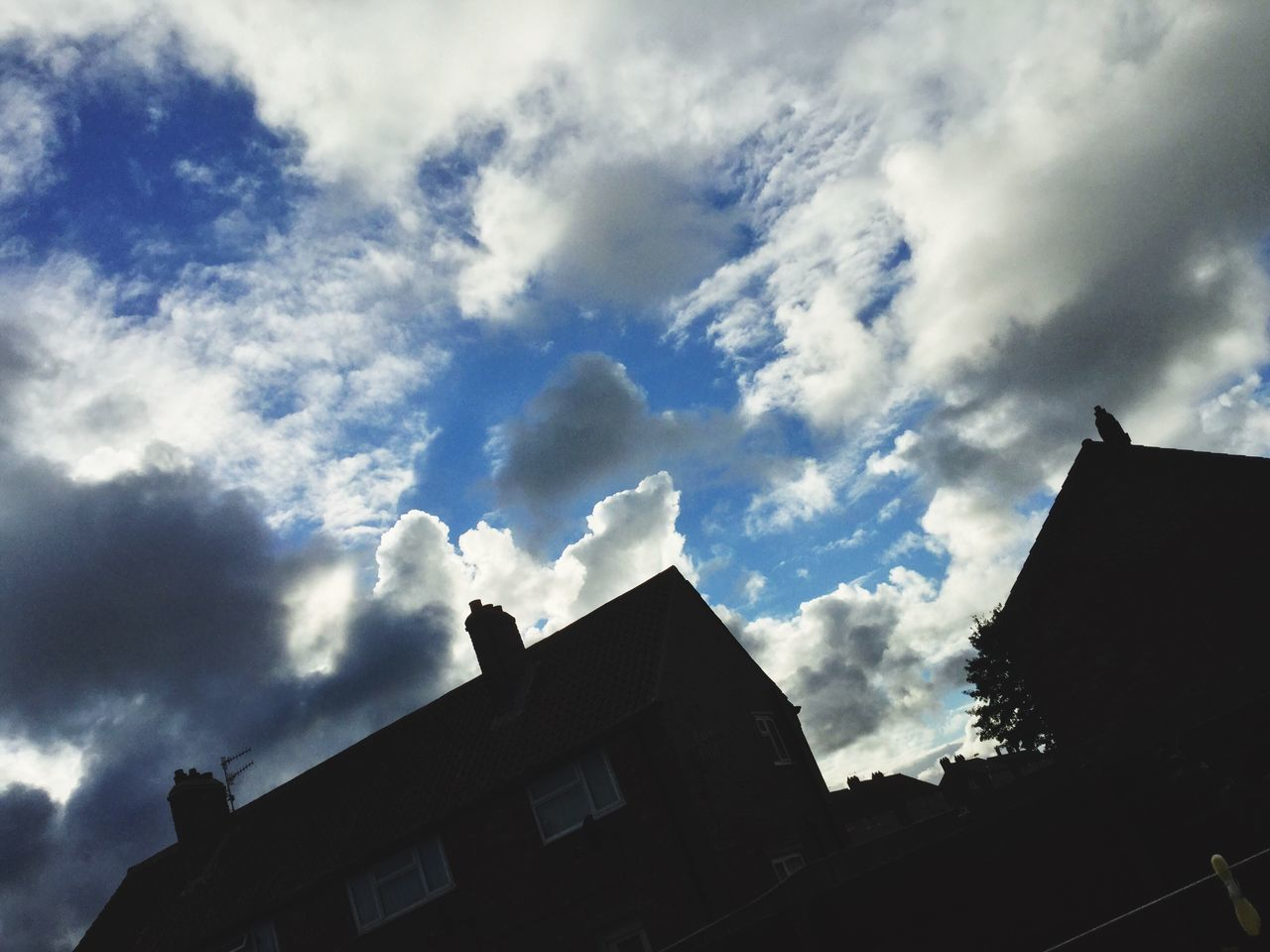 architecture, building exterior, low angle view, built structure, cloud - sky, sky, no people, silhouette, outdoors, roof, day, bird