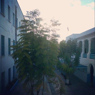 ? ? 4pm School High School Eyeem Tunisia Tunisia
