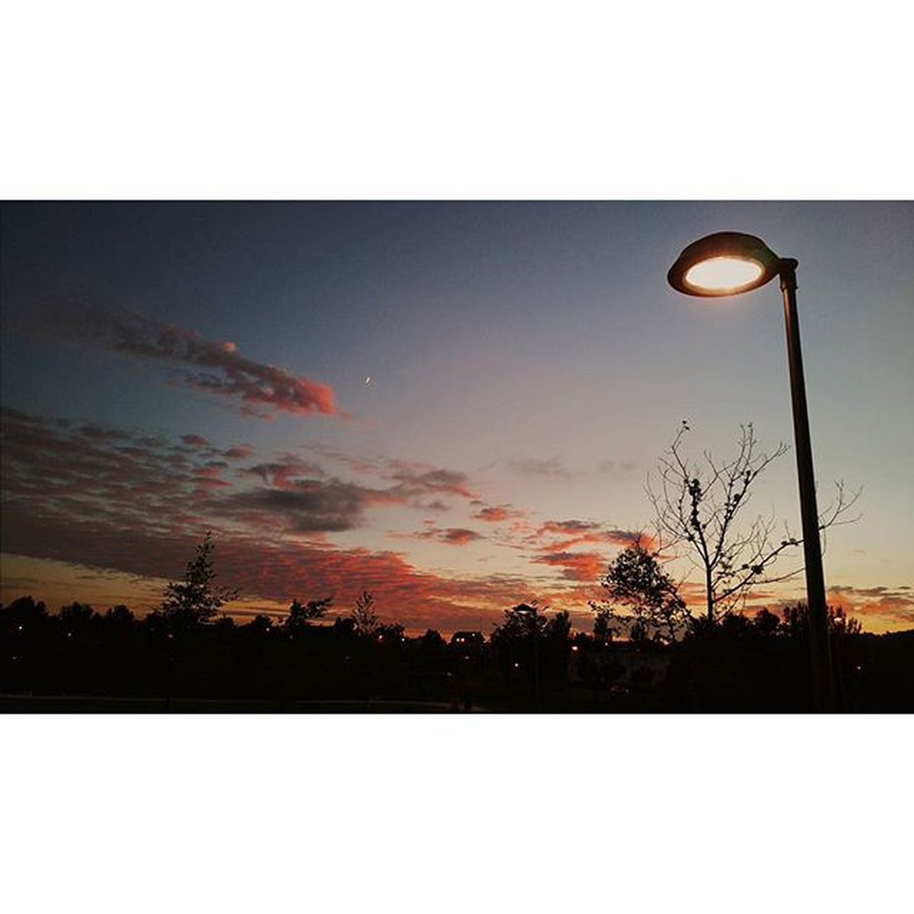 Instasize Vscocam Vscolovers Madeinpt Jrodrigues Photographer Photograph Vsco_pt Sunsetlovers Sunset Summer Sun Parquedacidade Fafe Municipiofafe VSCO Presets Photooftheday Thebest Top Photooftheday Running Run