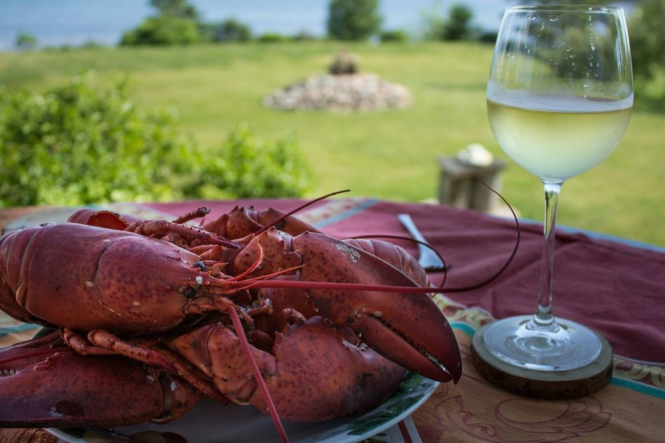 Beautiful stock photos of lobster, Cooked, Day, Drink, Field