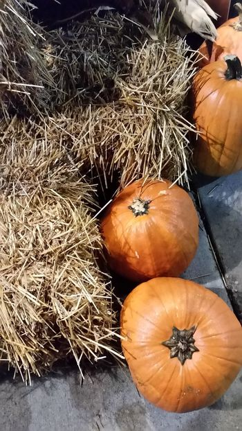 Focus Object Pumpkin Backgrounds Food And Drink Freshness Close-up No People Agriculture Food Outdoors Halloween