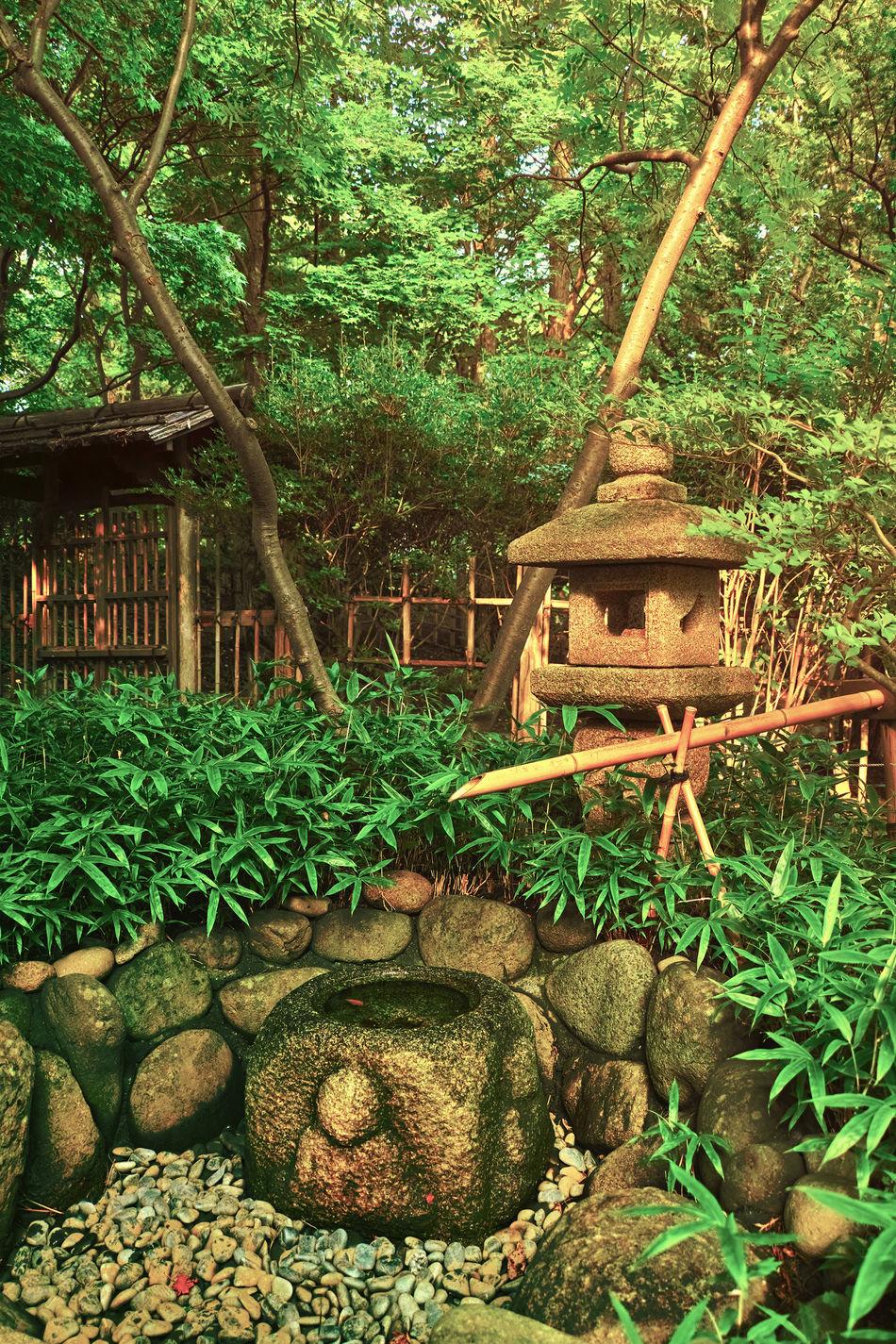 Green Japan Japan Style Japanart Landscape Nature Plant Relaxing Stone Lanterns 鹿威し