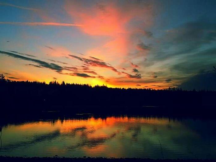 Epic Shot Photography Northwestsunsets Eyeemsunset Sky And Trees Natgeo Sunsets