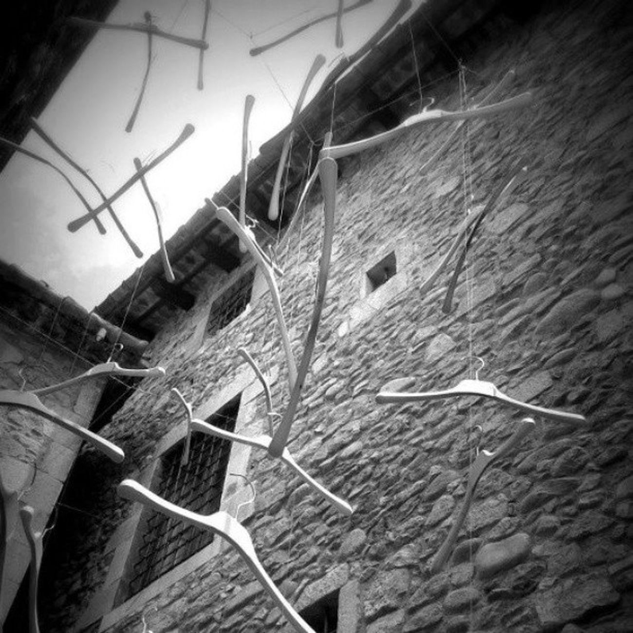 Girona Catalunya Tempsdeflors Igers lescala igersgirona visitlescala gironaemociona flors fotosdesomni descobreixcatalunya catalunyaexperience instagramers instaflors emporda catalunyagrafias igerscatalonia flowers catalonia incostabrava costabrava gironaturisme flores instagirona instagood mar ikg_photos gironatempsdeflors costa gironamenamora