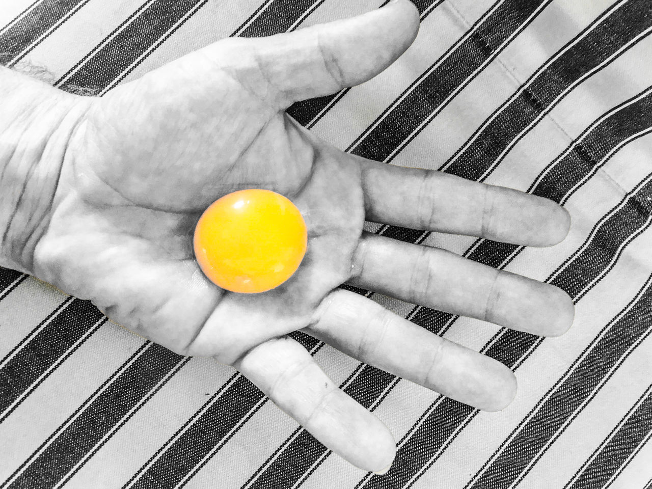 Separating eggs is a delicate task, especially when making Sauce Hollandaise Blackandwhite Caution Close-up Color Key Day Delicate Egg Yolk Food Fragile Hand Holding Human Body Part Human Hand Indoors  Striped View From Above Yellow Yolk