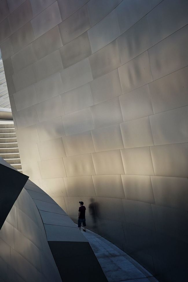 People And Places Walt Disney Concert Hall DTLA Frank Gehry Architecture