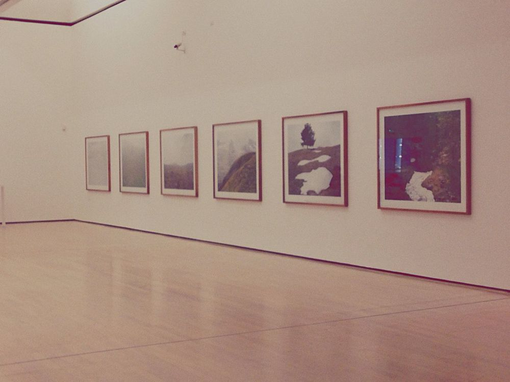 Taking Photos Photography Museum MART Rovereto Mart Museum Italy Trentino Alto Adige Vintage Art Nature