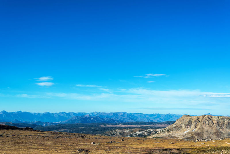 Landscape with mountains in the background taken in the Beartooth Mountains in Montna Alpine Montana National Scenic Shoshone Travel Tundra USA Wyoming Beartooth Destination Forest Highway Landscape Lodge Mountain Mountains Overlook Peaks Plateau Range Shoshone National Forest Tooth Valley Wilderness