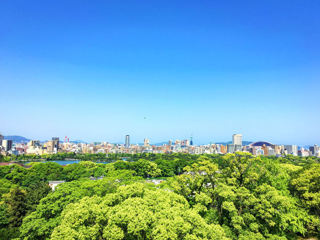 at Fukuoka castle Architecture Blue Built Structure Cityscape Clear Sky EyeEm Gallery From My Point Of View Green Color IPhoneography Landscape No People Sky Sky_collection Taking Photos Tree View From Above