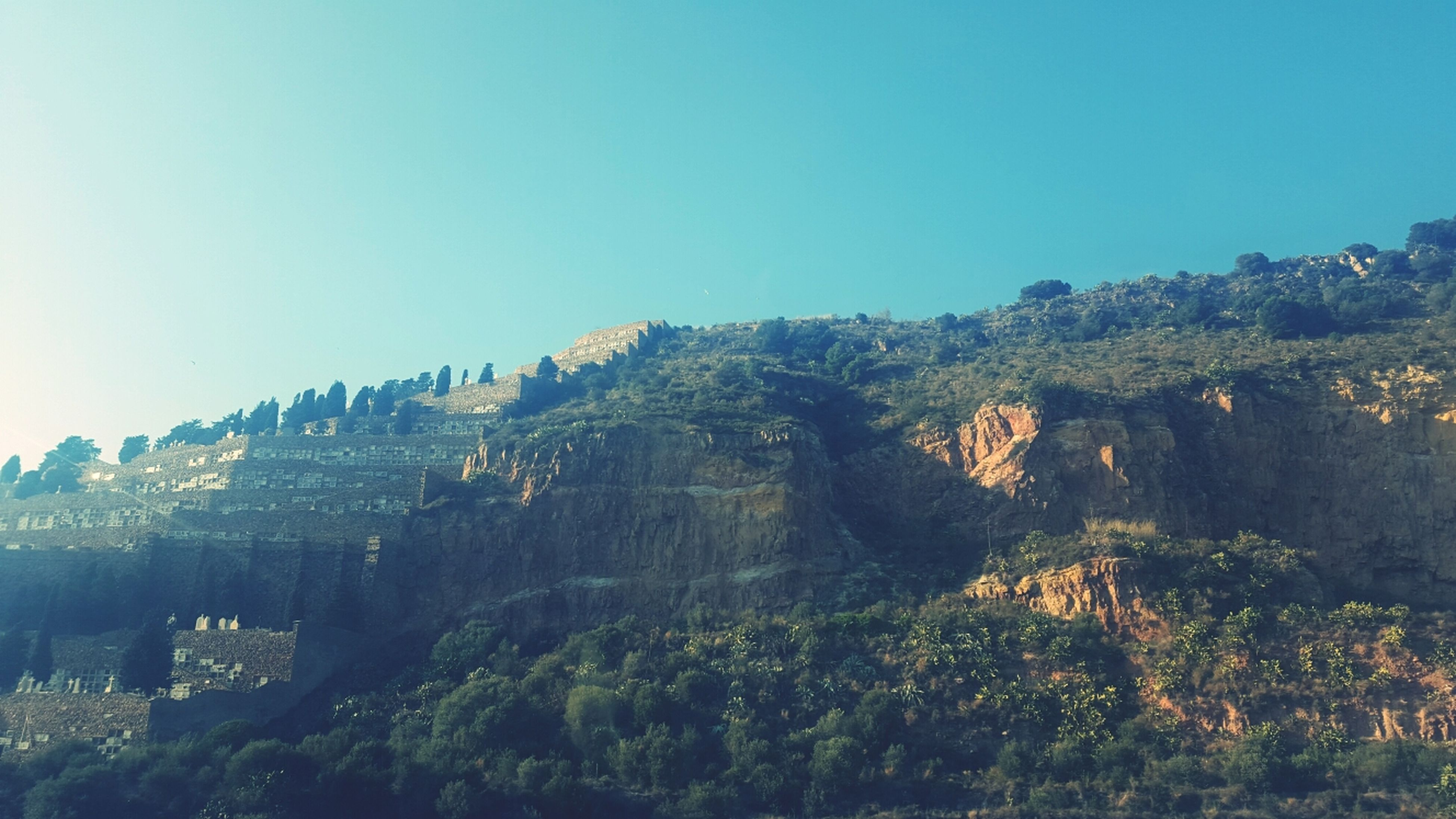 clear sky, tree, copy space, mountain, tranquility, scenics, tranquil scene, beauty in nature, nature, blue, landscape, growth, non-urban scene, low angle view, idyllic, sunlight, outdoors, no people, day, sky