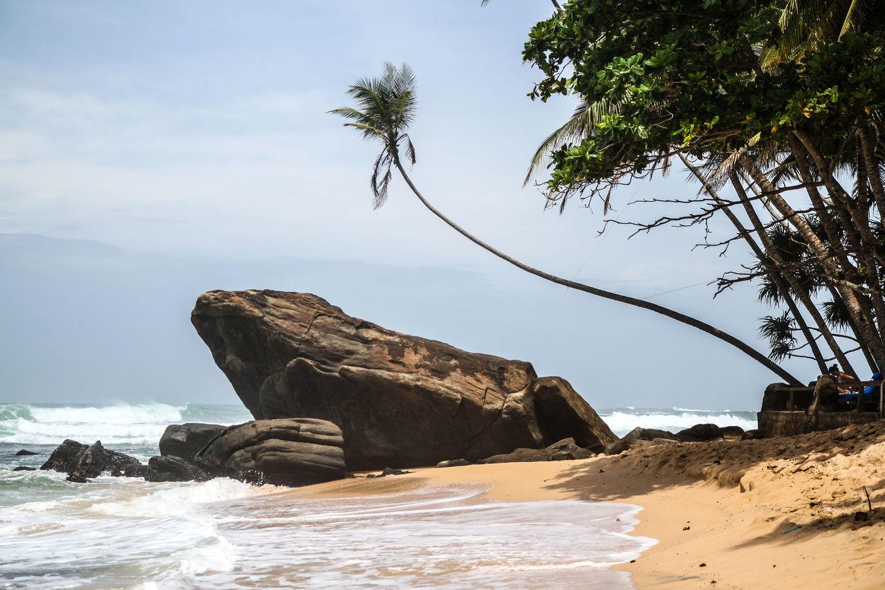Beach Nature Paradise Paradise Beach Plamtrees SriLanka Travel Unawatuna