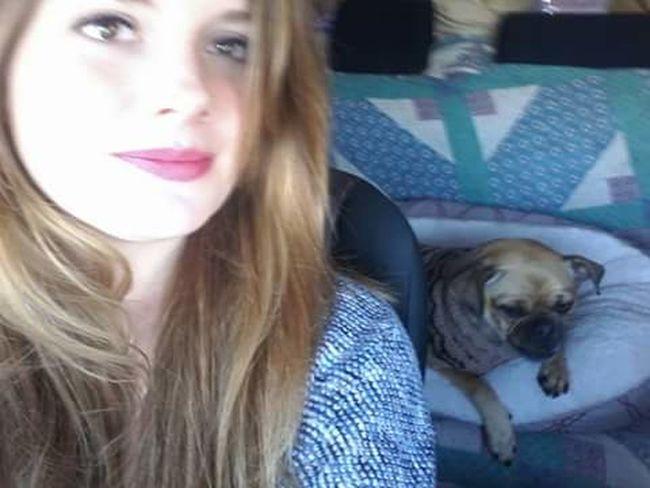 That's Me! My Dog Mybestfriend Chug Pug Chihuahua Mix Roadtrip Naps Loving Life! Fun