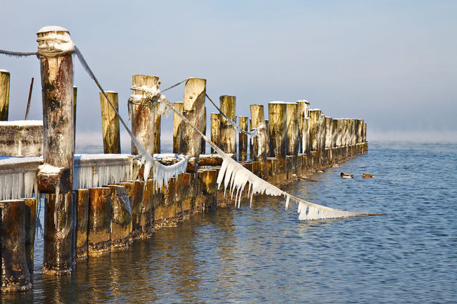 Groyne on shore of the Baltic Sea. Architecture Baltic Sea Beach Built Structure Coast Frozen Ice In A Row Ocean Sea Shore Sky Water Waterfront Winter Zingst