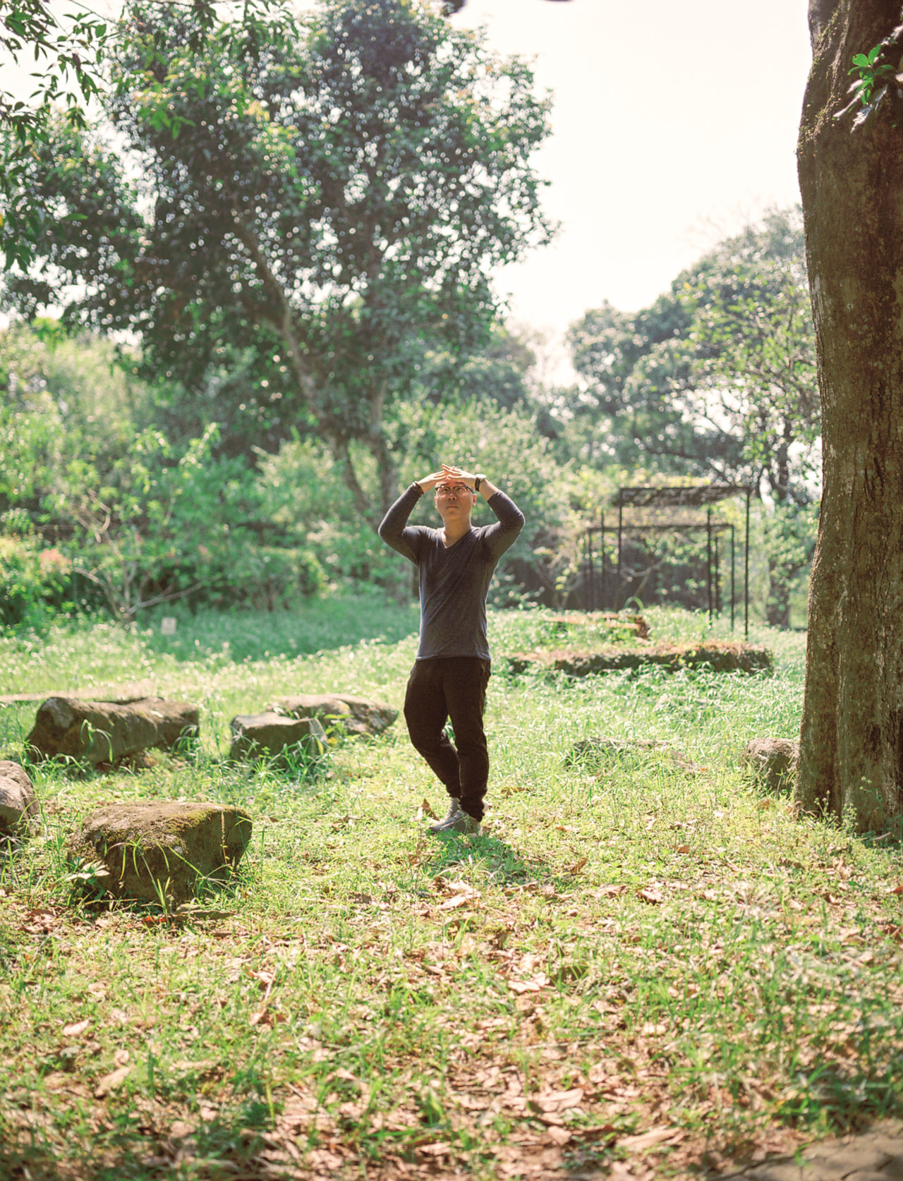 Autum Swinger Day Fence Field Forest Grass Grassy Green Green Color Hanging Out Landscape One Person Outdoors Park Portrait Standing Tree Tree Trunk Yama