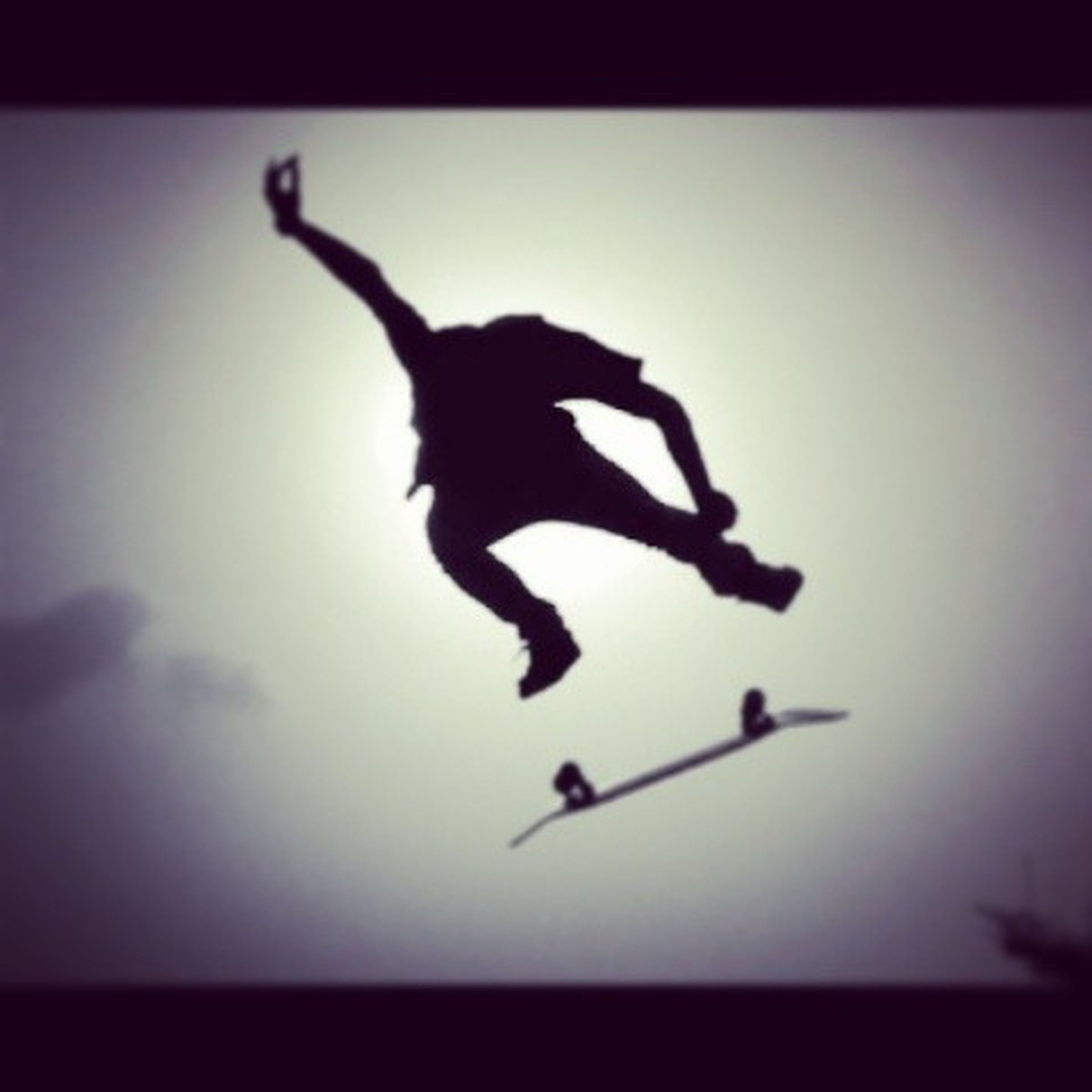 silhouette, transfer print, auto post production filter, mid-air, full length, clear sky, flying, copy space, selective focus, motion, wildlife, low angle view, lifestyles, vignette, leisure activity, animal themes, dusk, outdoors