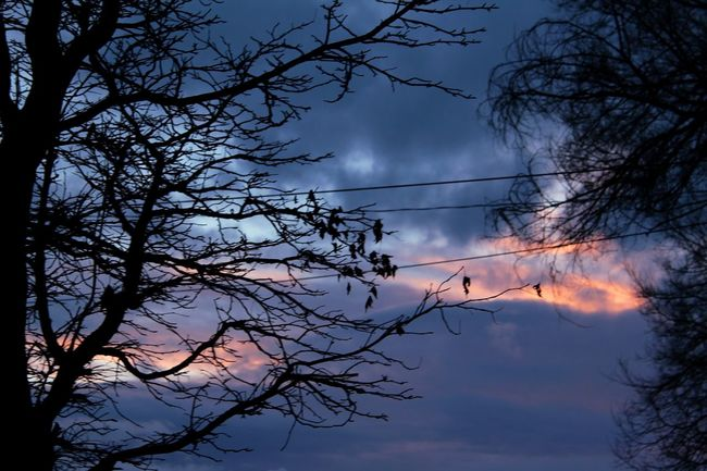 Taking Photos Relaxing Enjoying Life Nightphotography Taking Photos Sky And Clouds Sky_collection Baby Its Cold Outside Nature_collection Capture The Moment Frozen Nature Love Winter Beautiful Nature Freezingweather
