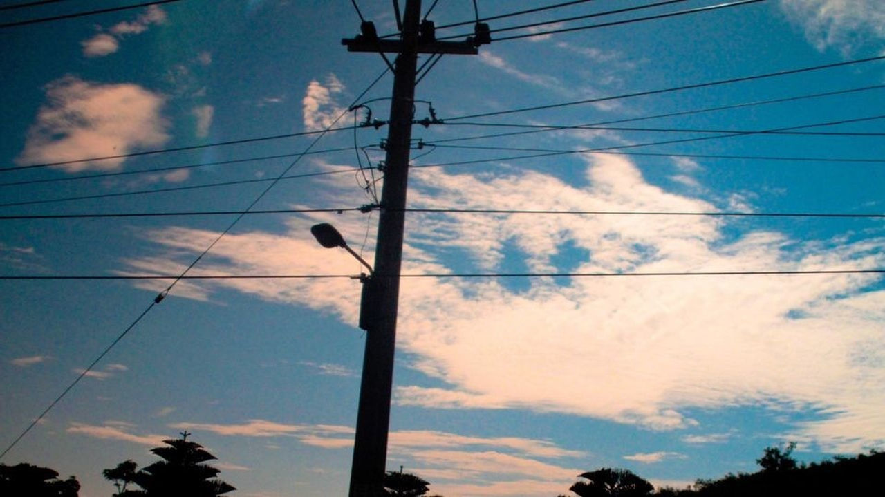 cable, power supply, power line, connection, electricity, low angle view, silhouette, fuel and power generation, sky, cloud - sky, technology, electricity pylon, bird, outdoors, animals in the wild, animal themes, day, no people, telephone line, nature, sunset, perching, tree