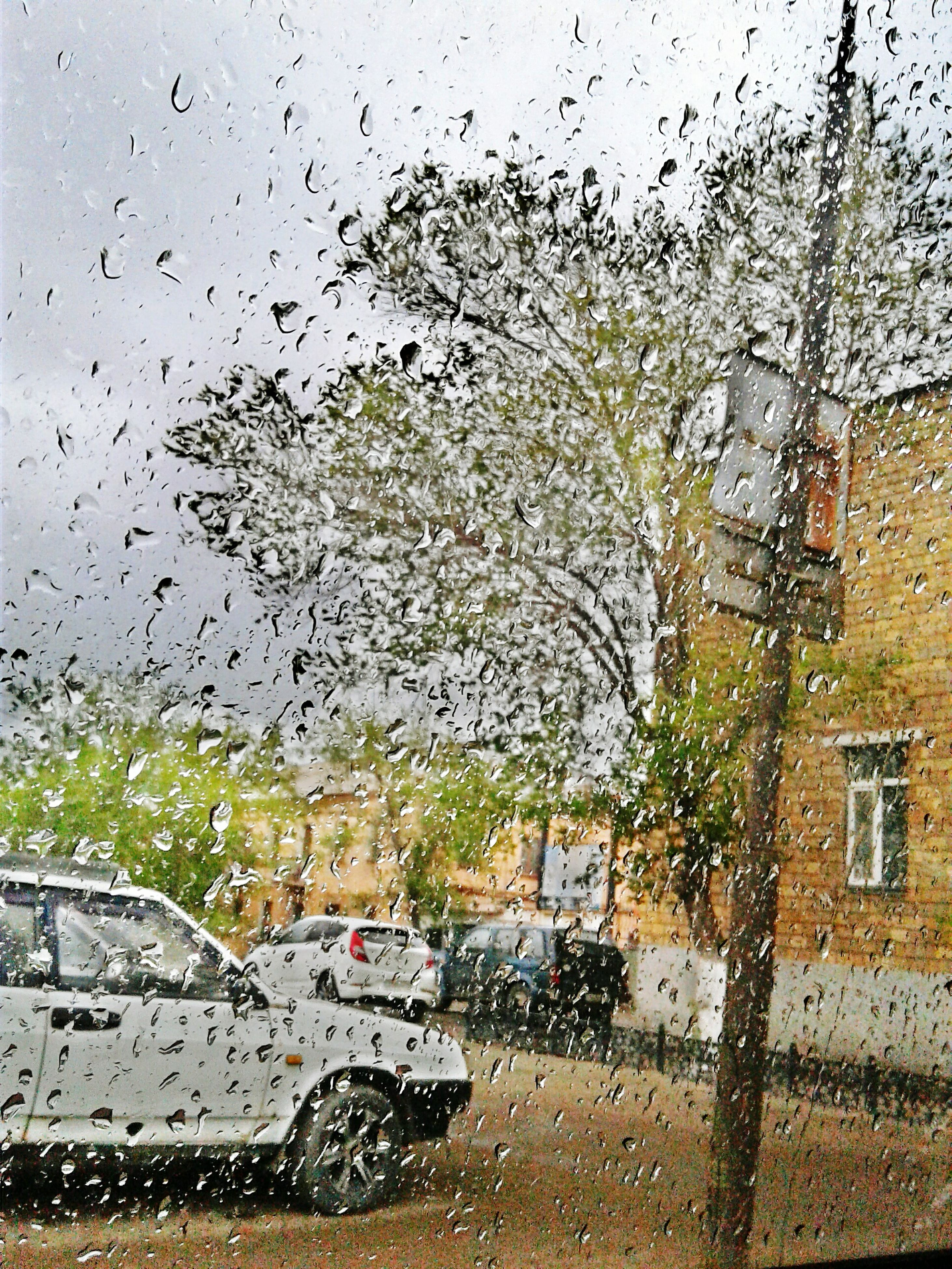 window, wet, drop, rain, transparent, car, glass - material, water, transportation, season, mode of transport, land vehicle, weather, raindrop, vehicle interior, indoors, tree, monsoon, windshield, sky