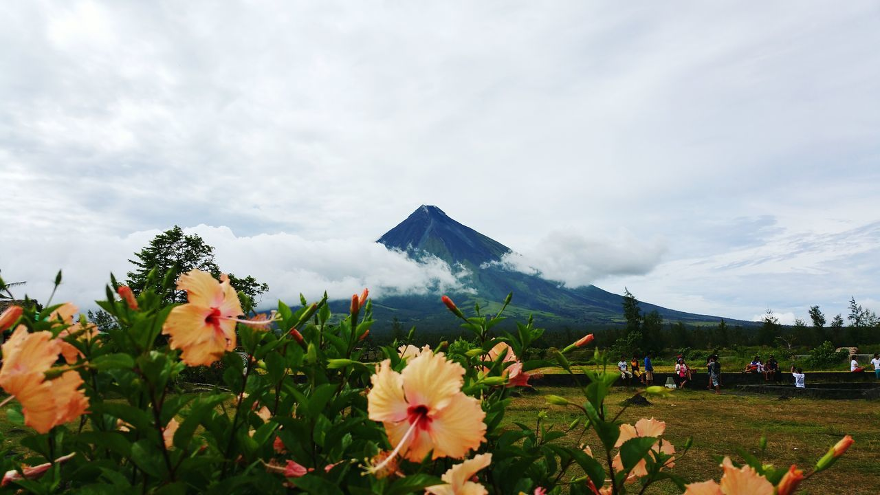 Beautiful stock photos of volcano, Beauty In Nature, Blooming, Cloud - Sky, Cloudy