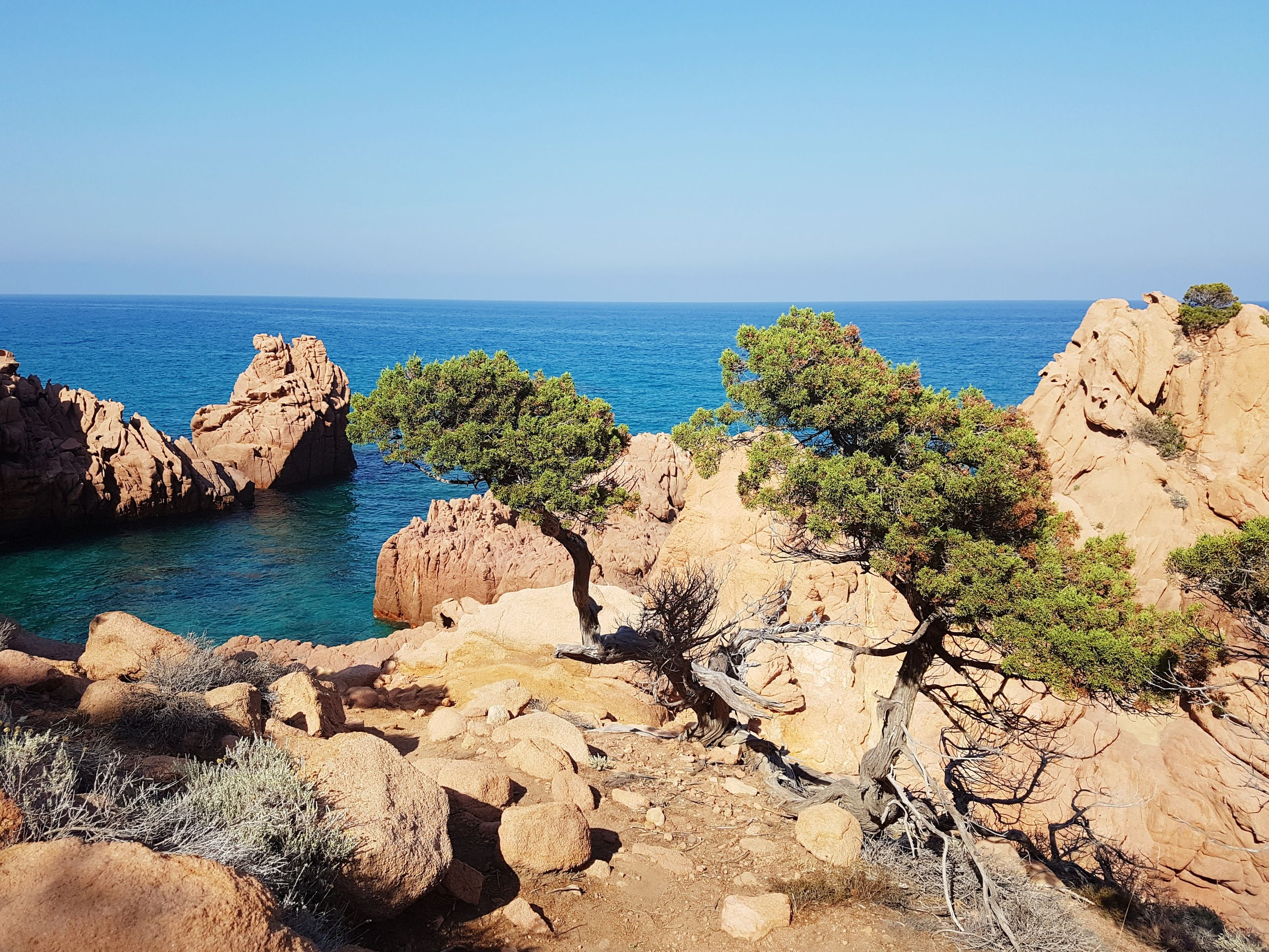 sea, horizon over water, scenics, water, rock - object, nature, tranquility, beauty in nature, rock formation, tranquil scene, clear sky, day, outdoors, no people, sunlight, blue, sky, sand, plant, cliff, beach