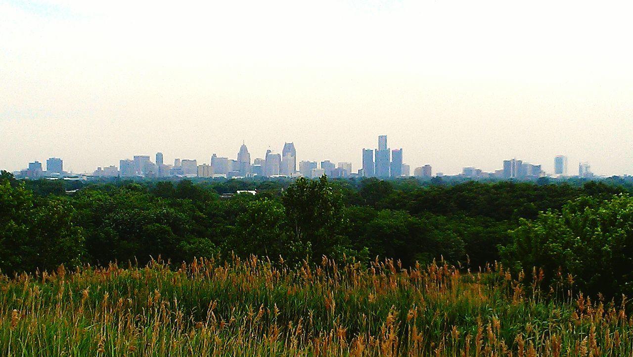 The Detroit skyline from Malden Park in Windsor Ontario. DetroitMichigan Detroit DetroitSkyLine Malden Park Windsor Ontario City View  Skyline Our American Neighbour