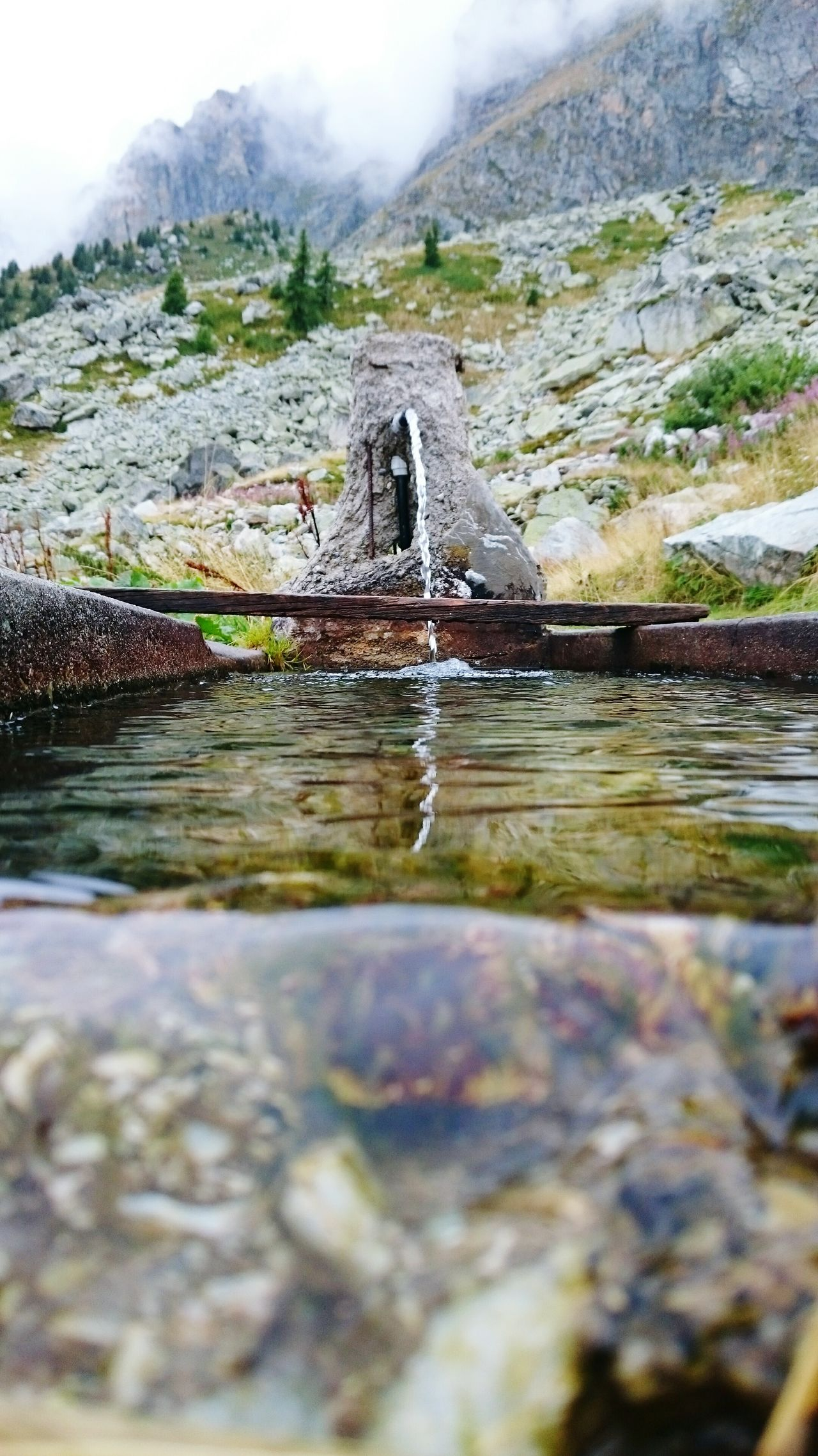 Need For Speed Trentinodavivere Trentino  Abbeveratorio Pascoli Fotosottacqua Trekking Hello World Crazysport Ilovenature