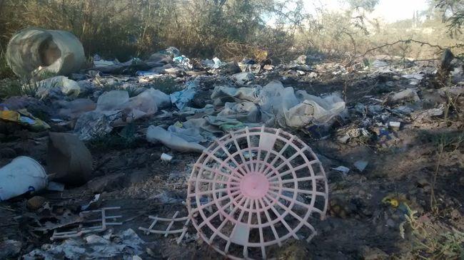 Matehuala Contaminacion Proyectos  First Eyeem Photo
