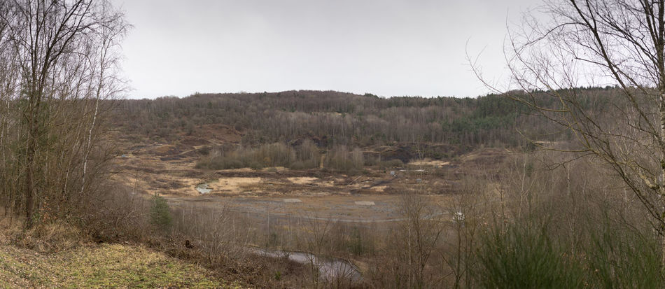 Die Grube Messel / The Messel Quarry Day Landscape Nature No People Outdoors Plant Silence Sky Tree Wilderness