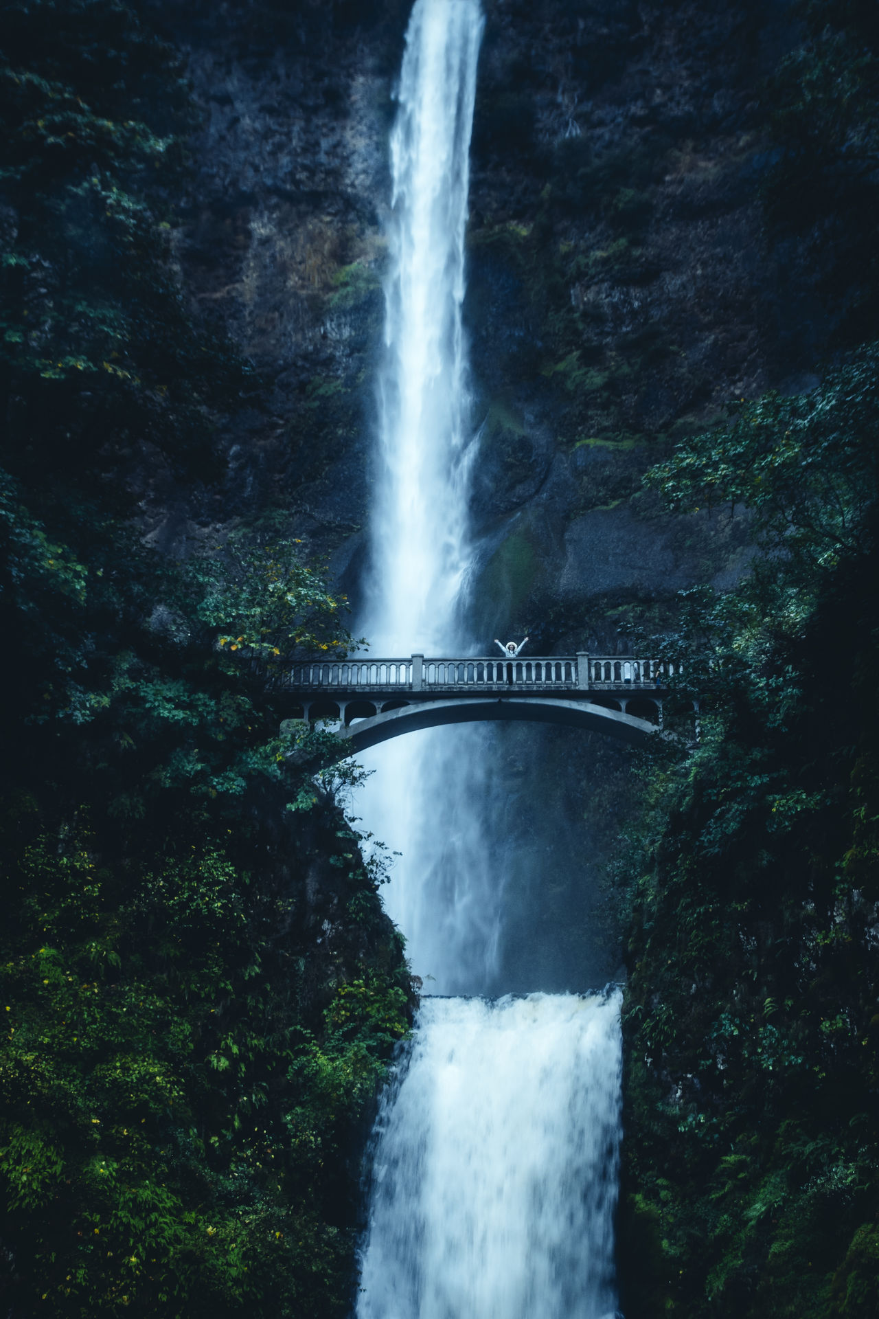 \o/ Multnomah Falls, Oregon Beauty In Nature Bridge Columbia River Gorge Dark Forest Long Exposure Motion Mt. Hood  Multnomah Falls  Nature Night Photography Oregon Outdoors Speed Water Waterfall