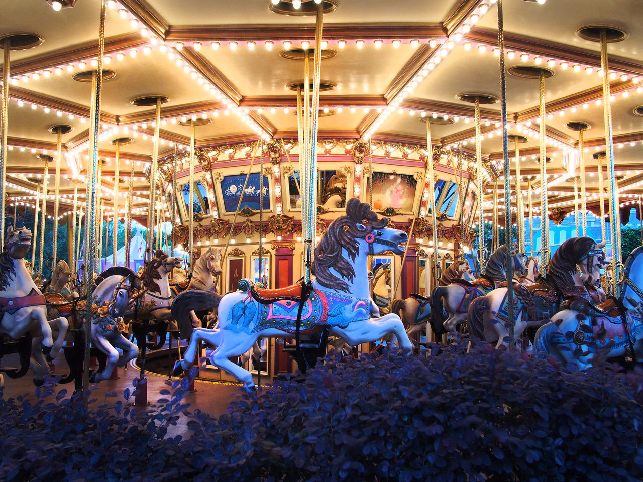 Carousel Carousel Horse Diseneyland Hong Kong Disneyland Horse Leisure Activity Rides Rides At Disneyland Showcase July