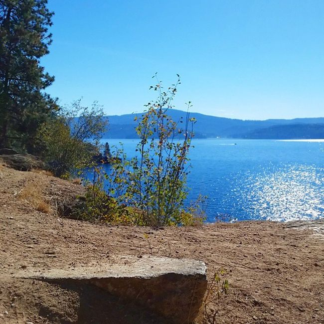 Run run fast. Take a break on a Rock and enjoy the view. Warm Fall day in October in the Northwest LakeCoeurdalene Enjoythelittlethings Running Trailrunning Amazingviews