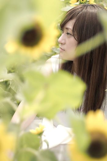 Portrait Of A Friend Portrait Of A Woman EyeEm Best Shots - People + Portrait EyeEm Nature Lover Flowers Flowerporn Sunflower Shootermag EyeEm Best Shots EyeEm Gallery EyeEmBestPics Eye4photography
