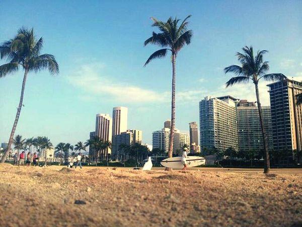 Hawaii Beach Waikiki Beach
