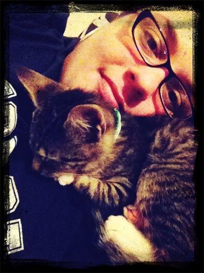 Pets Princess :)