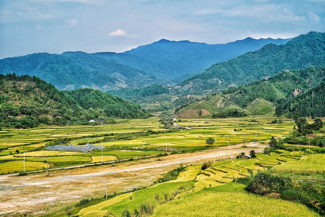 China Photos Landscape Mountain Growth Farm Agriculture Nature Tree Rural Scene Sky Outdoors Village Urban Geometry Urban Urban Life Beauty In Nature Scenics No People Tranquil Scene Sunset Rice Paddy Terraced Field Day Streamzoofamily Streamzoofamily Friends