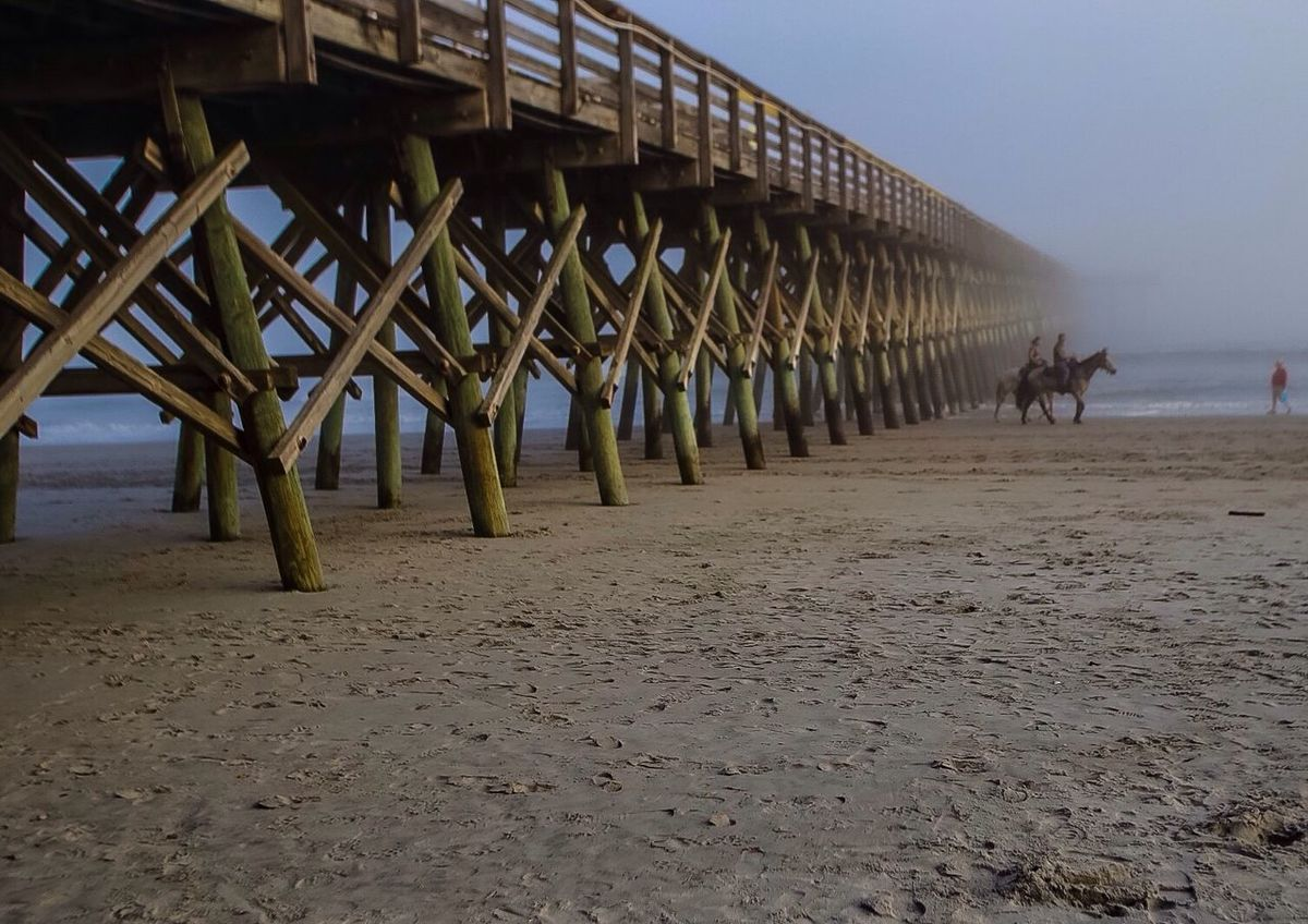 Riders Horse Back Riding Pier Beach Fog Myrtle Beach SC Horses