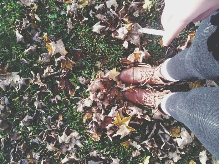 ♥ Herbst.
