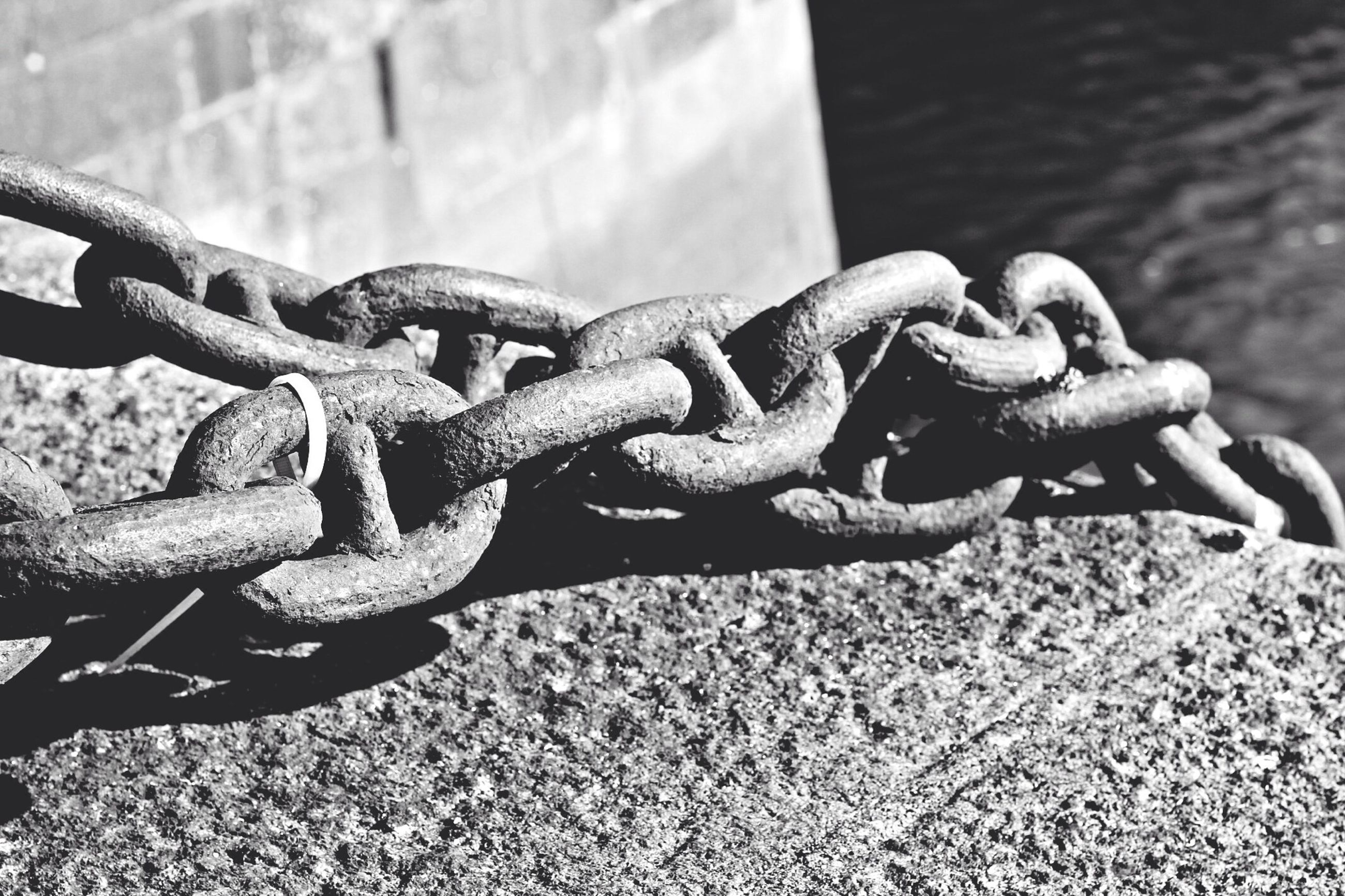 metal, chain, close-up, focus on foreground, metallic, strength, protection, safety, security, rusty, fence, rope, connection, day, water, outdoors, tied up, no people, chainlink fence, padlock