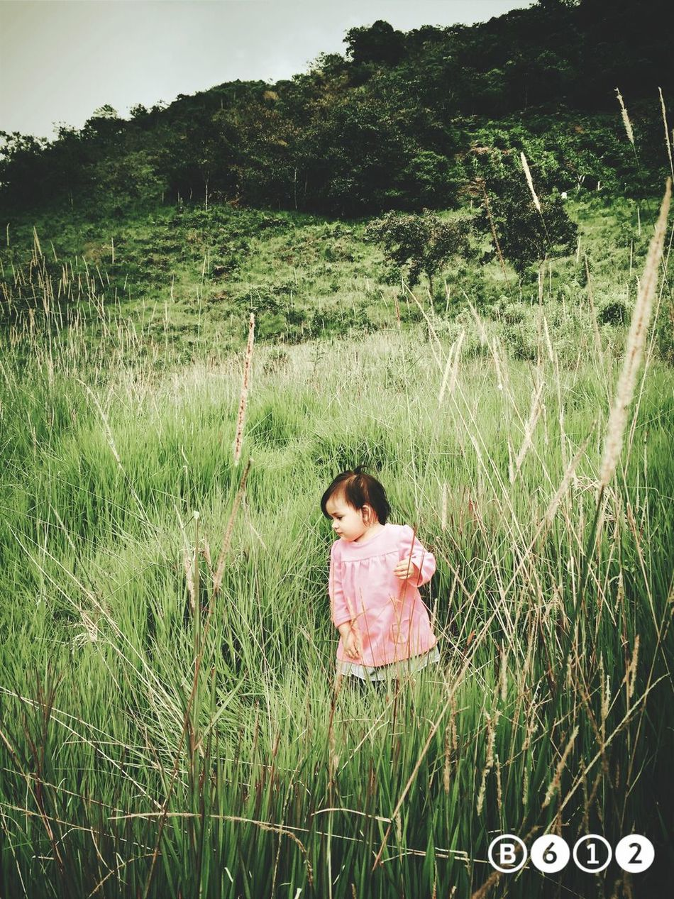 Como pasa el tiempo :') Littlesister Princess Baby Valentina Campo Check This Out Outside Meadow Nature Photography Ilovemysister Green Pretty Princess ♥ Sweet Little Girl Hey ✌ Goodday Curious Perfect Girl One Year Ago Pretty Girl In The Afternoon Travel For She