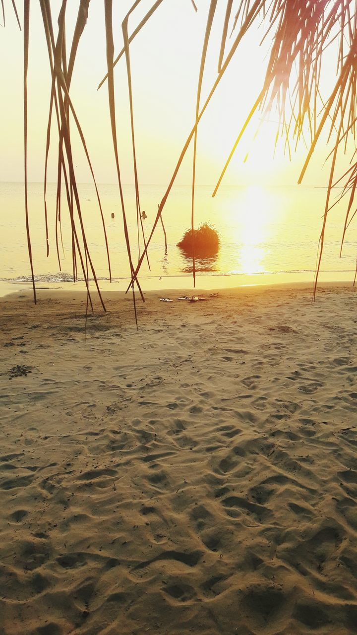 beach, sand, sea, sunset, nature, water, tranquility, tranquil scene, shore, beauty in nature, sun, scenics, horizon over water, outdoors, no people, sky, palm tree, tree, day