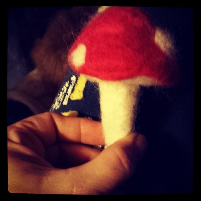 Hi, my name is Renee and I'm a Needlefelting addict. Lol Mushroom Crafts
