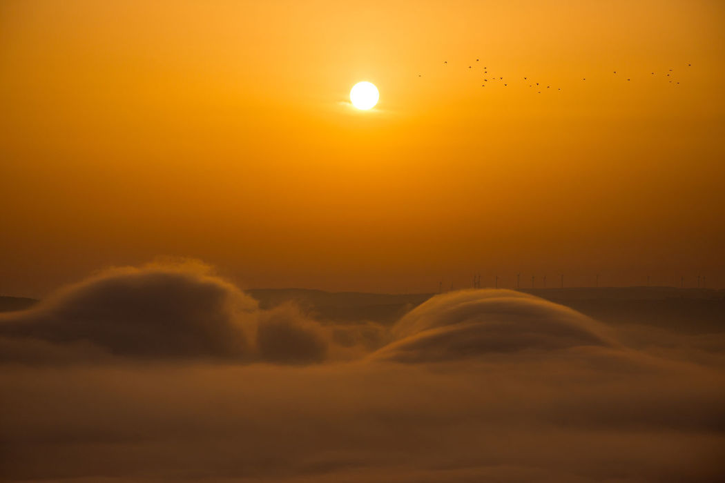 Above The Fog Tranquility Beauty In Nature Cloud - Sky Dramatic Sky Fog Foggy Morning Idyllic Landscape Nature Orange Color Outdoors Scenics Sun Sunset Sunset Above Misty Valley Sunset Above The Fog Tranquil Scene Tranquility