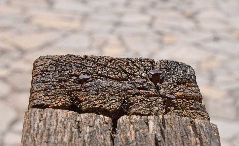 Beautiful stock photos of nail, Brown, Close-Up, Day, Metal