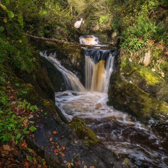 ~Autumnal flow~... Water No People Waterfall Outdoors Motion Beauty In Nature Scenics LumixG80 Streamzoofamily Landscape Landscape_Collection Taking Photos Sunlight Pretty Malephotographerofthemonth EyeEm Best Shots Nature Colours Rugged Rock - Object Waterfalls Long Exposure Beauty In Nature Foliage Tranquility