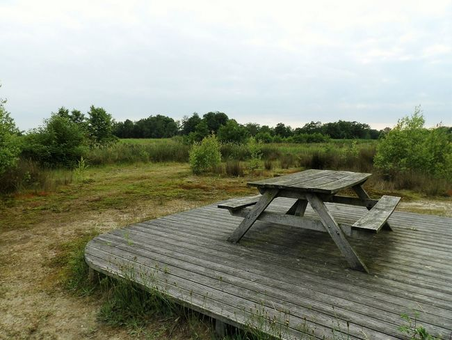 Picknickbench Dutch Dutch Photographer Dutch Landscape