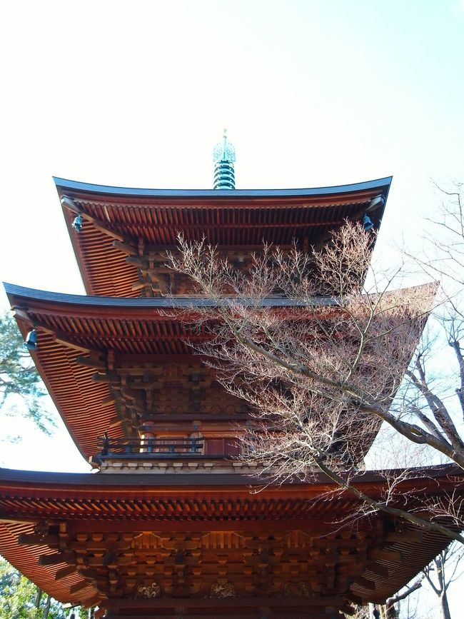 Taking Photos Lookingup Architecture Japanese  Temple Gotokuji Tokyo Winter Sky Roof